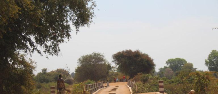 Article : Carnet de voyage (1/2) : sur le périlleux trajet N'Djamena – Moïssala